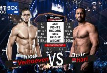 Why You Should Watch Rico Verhoeven vs Badr Hari