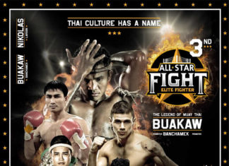 All Star Fight 3
