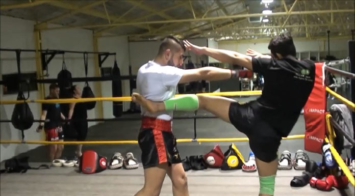 Muay Thai Left Kick Techniques