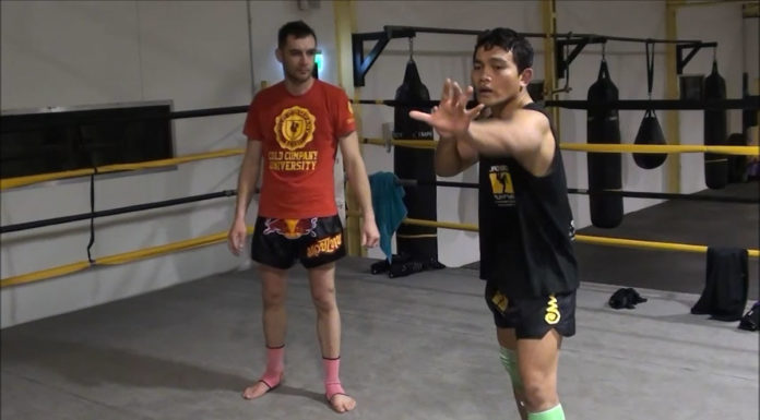 Defend Muay Thai knee strike and counter attack
