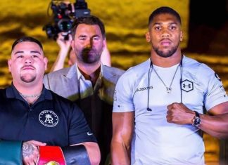 Andy Ruiz Jr vs Anthony Joshua 2 heavyweight championship rematch