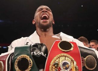 Anthony Joshua defeats Andy Ruiz by decision to regain heavyweight titles