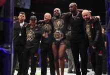 Jon Jones UFC light heavyweight champion