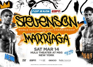 Shakur Stevenson vs Miguel Marriaga