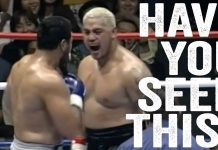 Mark Hunt vs Ray Sefo