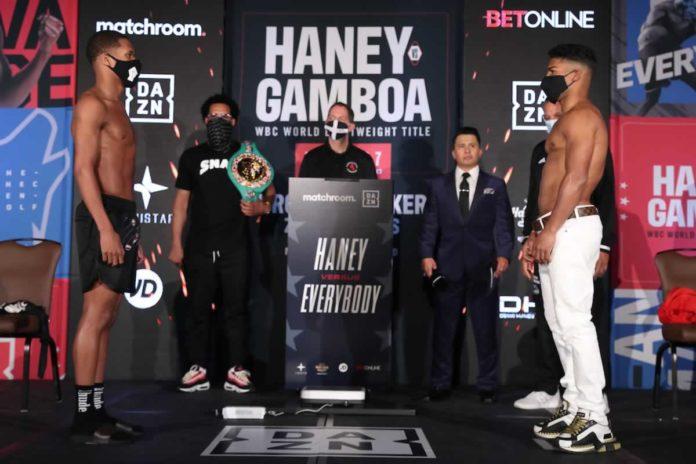 Devin Haney vs Yuriorkis Gamboa
