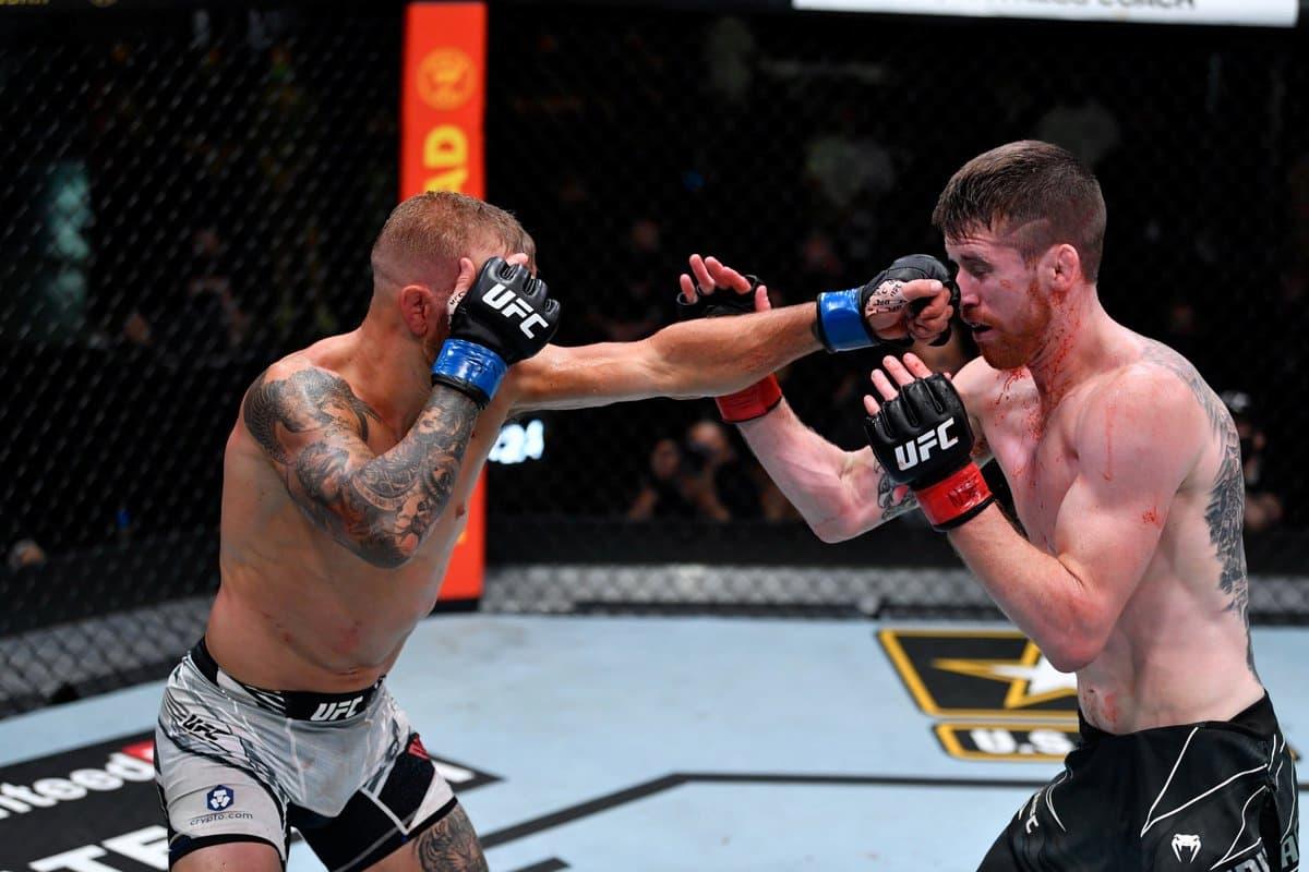 TJ Dillashaw vs Cory Sandhagen full fight video highlights